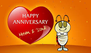 Anniversary Quotes For Parents From Daughter (Anniversary Wishes For Parents)