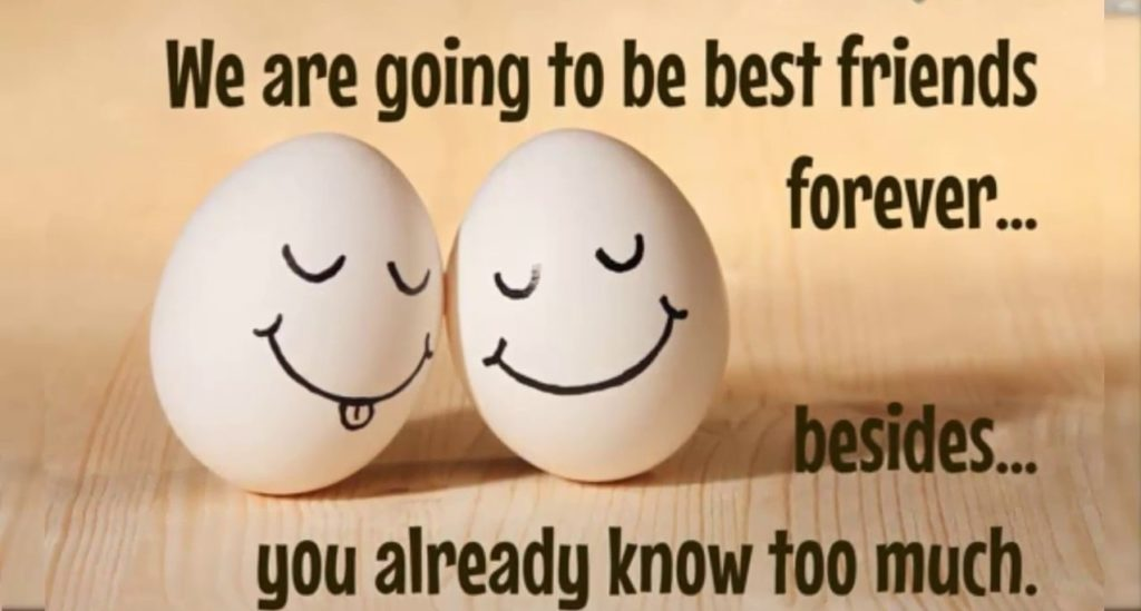 Friendship Laughter Quotes